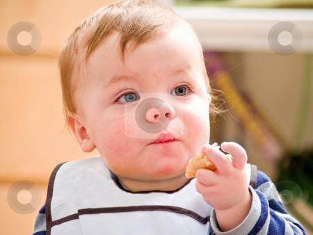 Cute little baby boy eating bread stock photo, Cute little baby boy  eating bread by Phillip Dyhr Hobbs