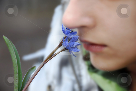 Blue spring flowers stock photo, Blur girl smells blue spring flowers closeup by Julija Sapic