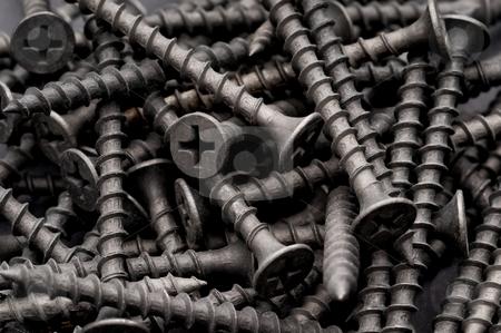 Macro of dark grey coarse thread drywall fastening screws stock photo, Macro of dark grey coarse thread drywall fastening screws by Vince Clements