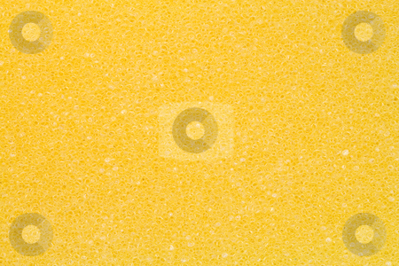 Texture of a Sponge stock photo, A close-up of the texture of a yellow sponge by Petr Koudelka