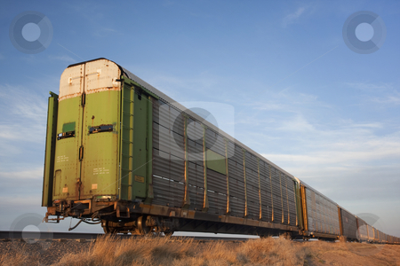 Train of old stock rail cars for livestock transportation  stock photo, Old double deck rail stock cars for livestock tranportation left on a sidetrack in Colorado prairie by Marek Uliasz