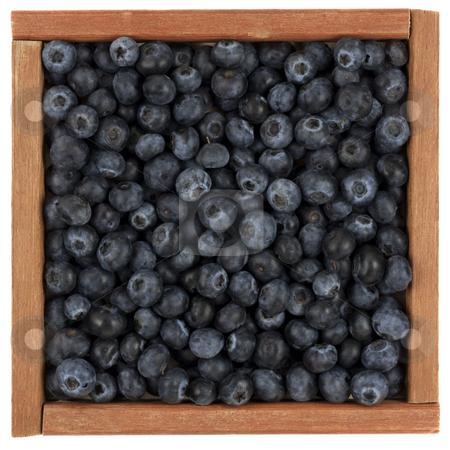 Blueberries in wooden box stock photo, Fresh blueberries in a rustic, wooden box or frame, isolated on white by Marek Uliasz