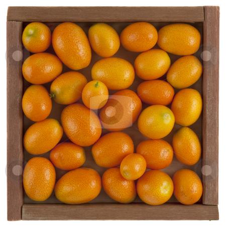 Kumquats in a rustic, wooden box stock photo, Handful of kumquats in a rustic, square, wooden box, isolated on white by Marek Uliasz