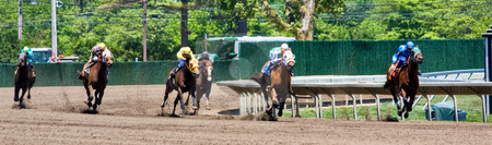 Horse Race Panorama stock photo, A horse race in a panoramic format by Stephen Bonk