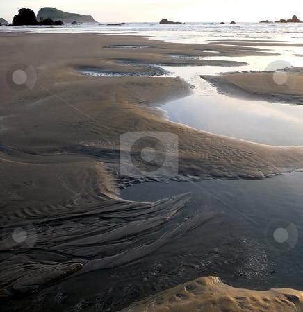 Reflective tidepools on sandy beach stock photo, Tidepools reflect the sky along a sandy Oregon beach by Jill Reid