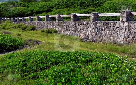 Stone Wall stock photo, Tropical foliage and stone wall leading to the sea in St. Martin, FWI by Jill Reid
