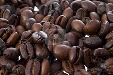 Coffee Beans stock photo, Macro shot of Coffee Beans with focus on center by iodrakon