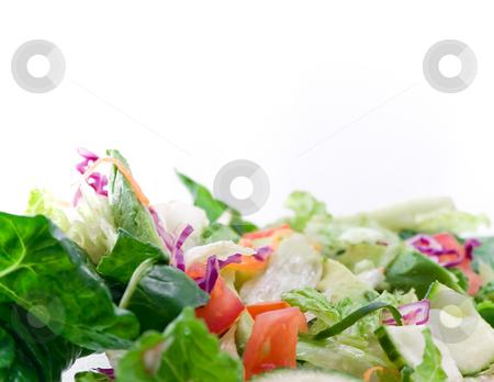 High key closeup of salad stock photo, High key close up of salad with copy space by iodrakon