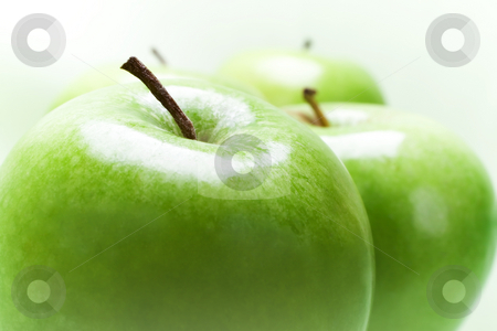 Green Apples  stock photo, Close up of four green apples over light green background by iodrakon