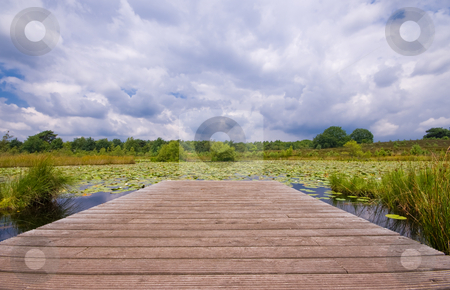 Wooden pier on a lily pond stock photo, Wooden pier on a lily pond with very dark rain clouds in the sky by Karin Claus