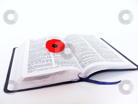 Bible with poppy   stock photo, An open Bible with a red Veterans poppy on the pages on white background. by Horst Petzold