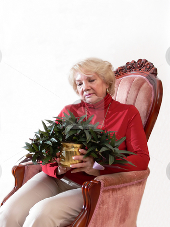 Senior citizen    stock photo, A senior citizen sitting in a armchair with a plant in her hand. by Horst Petzold