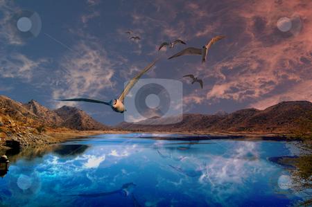 Into my dreams stock photo,  by Piero Biondo