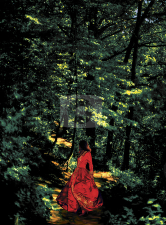 Into the Woods stock photo, Woman walking through the Woods by Miguel Dominguez