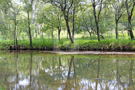 Pollution stock photo, Trees reflected off a lake, showing pollution on the banks by Chris Alleaume