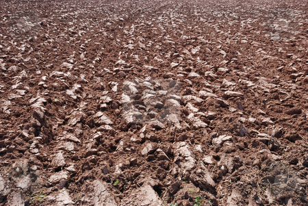 Plowed ground stock photo, Background made of plowed ground on a sunny day. by Ivan Paunovic