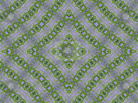 Turning Violet Background Pattern stock photo, Turning Violet,  Background Pattern by Dazz Lee Photography