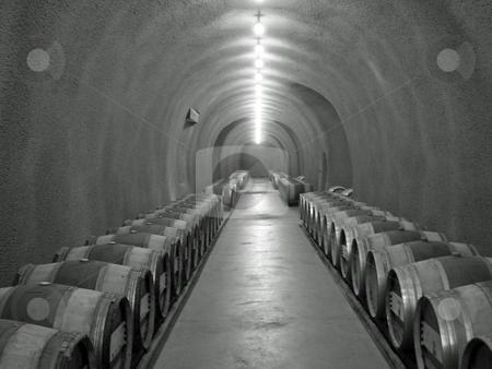 Wine cellar stock photo, Black and white image of wine cellar by Jaime Pharr