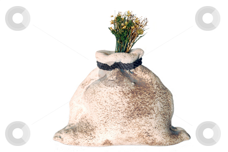 Stone bag with a plant stock photo, Stone bag with a plant isolated on a white by Alexey Rumyantsev