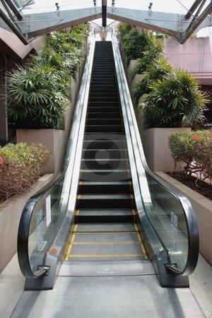 Eco friendly escalator stock photo, Facing up single escalator closeup with green plants in both sides by Purtojo Soejarno