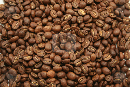 Kenyan Coffee Beans stock photo, Mild aromatic Kenyan coffee beans for use as a background or wallpaper perhaps? by Helen Shorey