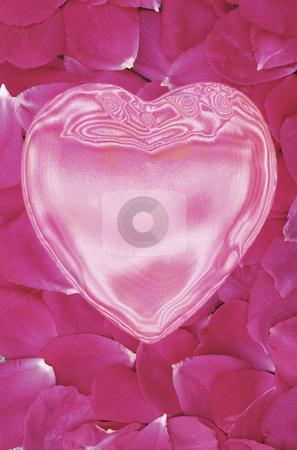 Homage to Jane Mansfield (Satin Doll Love) stock photo, Shiny Pink Heart over Field of Rose Petals by Miguel Dominguez