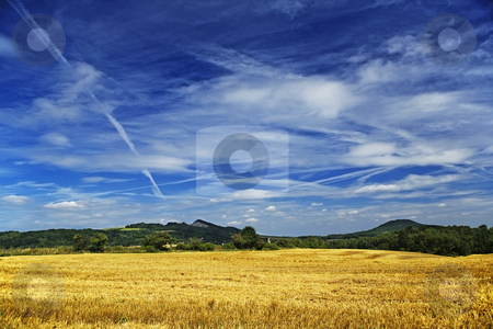 Summer landscape stock photo, Summer landcape with field and sky by Tom P.
