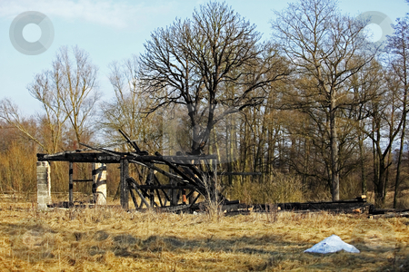 After fire stock photo, Damaged house and tree after conflagration by Tom P.
