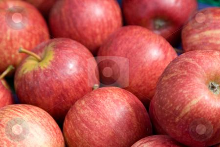 Apples stock photo,  by Stefan Franz
