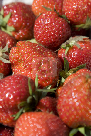 Strawberries stock photo,  by Stefan Franz