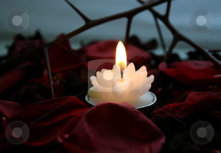 Fire of petals stock photo, The candle with a bright flame on petals burns by Aleksandr GAvrilov