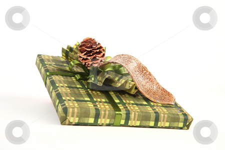 Christmas present stock photo, Christmas present in green paper with unusual decorations by Tom P.