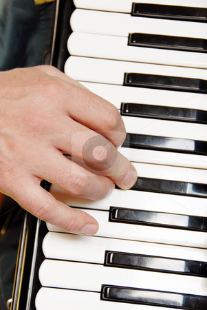 Musician hand playing accordion stock photo, Musician hand playing accordion by Julija Sapic