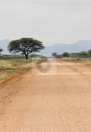 Dirt road stock photo, Dirt road with heat shimmers, Namibia, Africa by mdphot