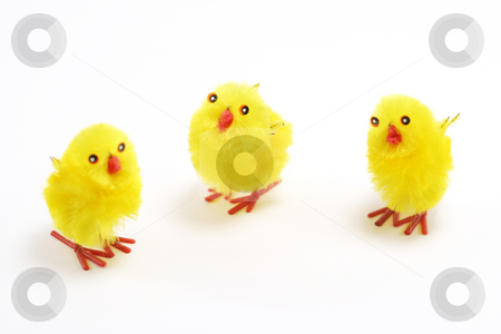 Three fluffy chicks stock photo, Three fluffy yellow chicks - used for cake decoration by Helen Shorey