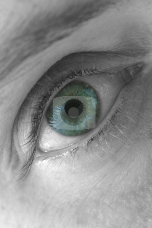 Blue Eye, Macro stock photo, Selectively coloured close-up of a woman's right eye.  The eye is mainly blue, however, it is speckled with other colours as well, giving it a greenish tint. by Rick Parsons