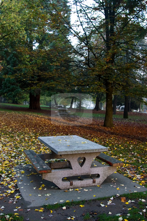Picnic Table stock photo, Empty picnic table in the park in the fall. by Rick Parsons