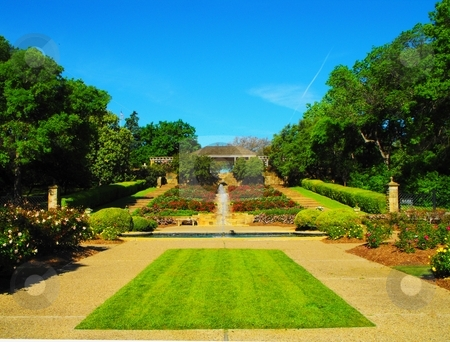 Botanic gardens stock photo, The Fort Worth Botanic gardens, looking from the end of the rose garden by Robert Brown