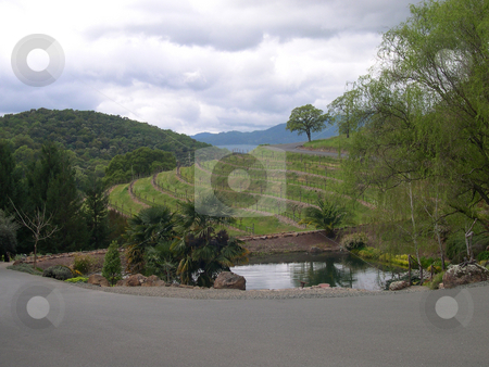 Garden and pond stock photo, Garden and pond in California wine country by Jaime Pharr