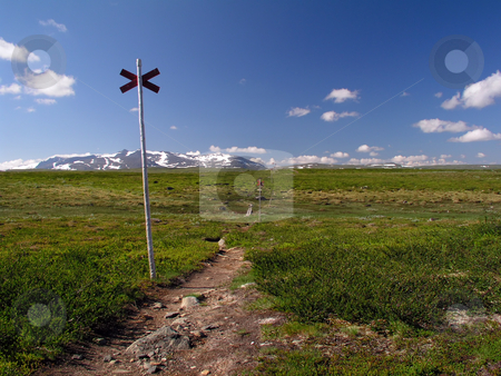Hiking trail stock photo, Hiking trail in north Sweden by Ingvar Bjork