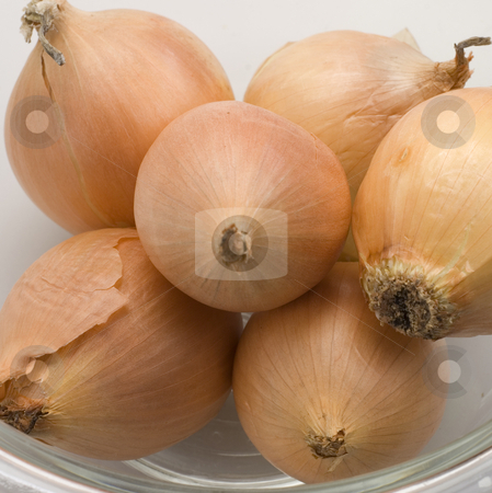 Onions stock photo, Close up of onions with plenty of detail by Jonathan Hull