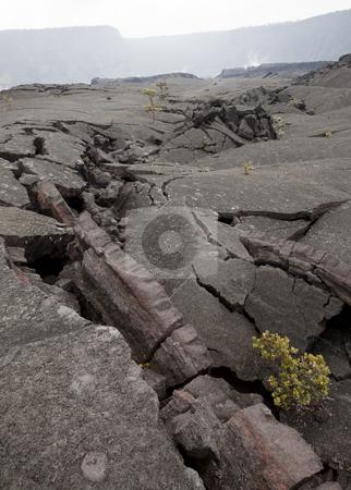 Lava Cracks stock photo, Cracks in the foggy Kilauea Iki crater, Hawaii Volcanoes National Park, Big Island, Hawaii, USA by mdphot