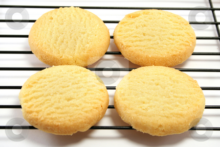 Four Shortbreads on a cooling rack stock photo, Close up on four shortbread biscuits on a cooling rack by Helen Shorey