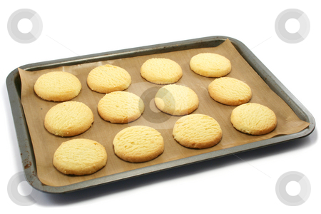 Shortbread on a Baking Tray stock photo, All butter shortbread biscuits on a nonstick baking sheet on a baking tray, fresh from the oven by Helen Shorey