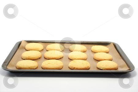 Oven Fresh Shortbread stock photo, All butter shortbread rounds on a nonstick baking sheet on a baking tray, fresh from the oven by Helen Shorey