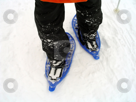 Snowshoes trekking stock photo, Snowshoes trekking in the Alps by Roberto Marinello
