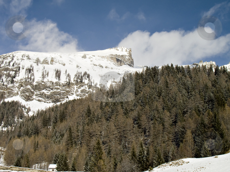 Snowy rock summits and forest stock photo, Winter landscape with snowy windy rocks and green firs in val d'Ossola, Italy by Roberto Marinello
