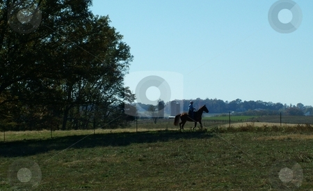 Silhouette of Man and His Horse stock photo, Silhouette of a man riding his chestnut horse along the countryside with grain silos in the background. by Krystal McCammon