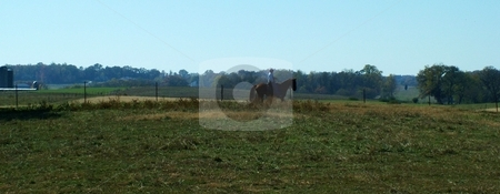 Silhouette of Man and His Horse stock photo, Silhouette of a man on his chestnut horse along a pasture with grain silos and farmed countryside in the background. by Krystal McCammon