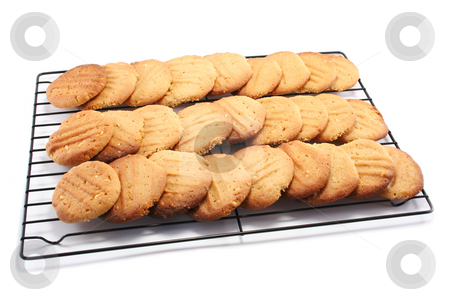 Lots of Cookies stock photo, A large batch of homemade peanut butter cookies, cooling on a metal cooling rack by Helen Shorey